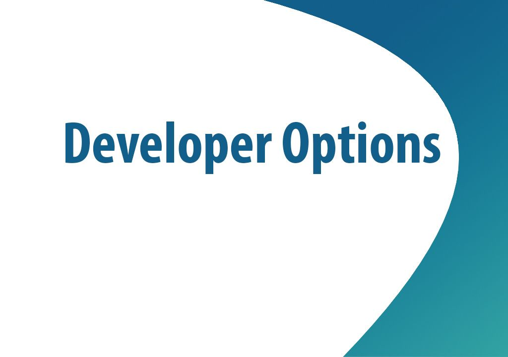 What can you do with developer options?